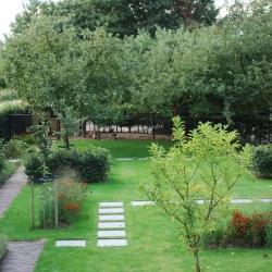 overzicht van de tuin